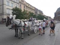 Púť do Krakowa 2017